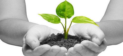 Memajukan Startup Pada Situasi Yang Sulit | Belajar Internet Marketing | Scoop.it