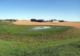 BWSR, NRCS to partner on agricultural wetland mitigation banking program - Sleepy Eye Herald Dispatch | Nature + Economics | Scoop.it