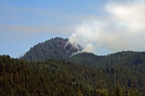 Firefighters dispatched to Willamette National Forest blaze - Albany Democrat Herald | Forests Unlimited | Scoop.it