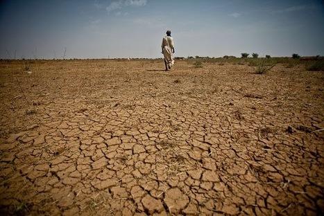 Dahsyatnya Dampak Global Warming Bagi Kehidupan   Pemanasan Global   Scoop.it