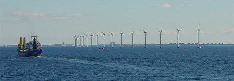 Offshore Wind Benefits Sea Life | Sustain Our Earth | Scoop.it