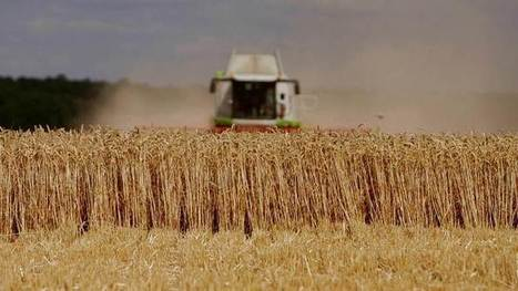 Manger plus pour se nourrir moins - Dimanche 3 Avril 20h40 | Alter Tierra: Agroécologie & Agriculture | Scoop.it