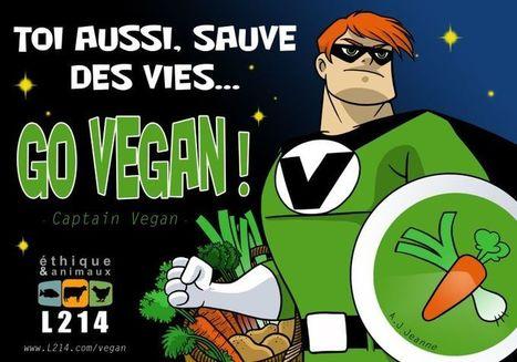 Ma première expérience Vegan… / En cuisine avec Chef Jésus | My global Bordeaux | Scoop.it