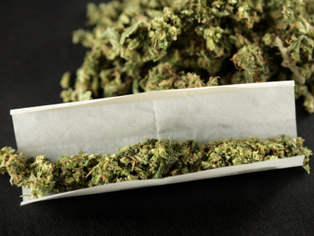 Does marijuana make motorists accident-prone? | Medical News | Scoop.it