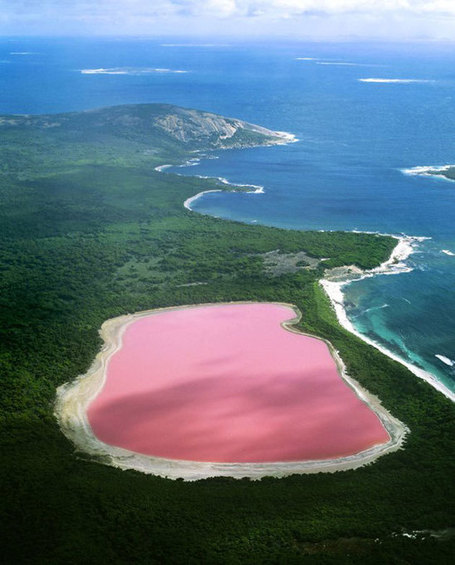 Pink Lakes | Geography Education | Scoop.it
