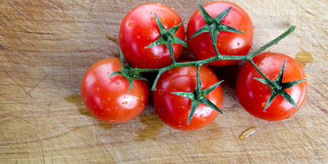 Tomato-Rich Diet Could Help Protect Against Breast Cancer, Small Study ... - Huffington Post | Nutrition Today | Scoop.it