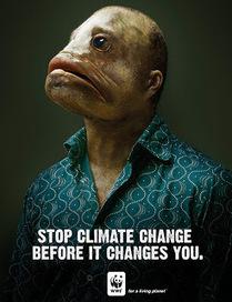 NATURA - MEDIO AMBIENTAL ©: Carteles de protesta por la destrucción del medio ambiente | Agua | Scoop.it