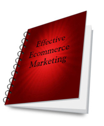Ecommerce Marketing Strategies to Grow Your Business! | Cambridge Technicals Level 3 ICT Unit 06 e-Commerce | Scoop.it