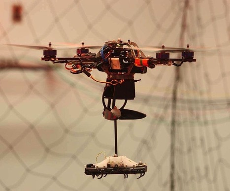 What Drones Are Learning From Insects (video) #drone #droneday | Heron | Scoop.it