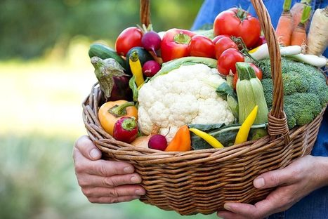 Why Organic Is Not Just a Fad or Trend - Organic Connections | Healthy Living | Scoop.it