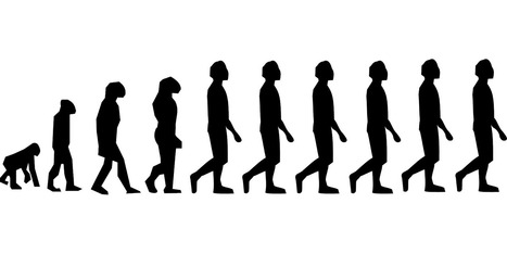 Economist suggests humans are still evolving | Aux origines | Scoop.it