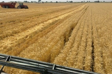 Guidelines avoid farm link | Farming and Agriculture | Scoop.it
