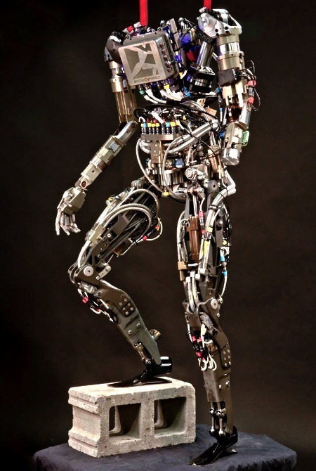 Stunning Video of PETMAN Humanoid Robot From Boston Dynamics - IEEE Spectrum | Robotics Frontiers | Scoop.it