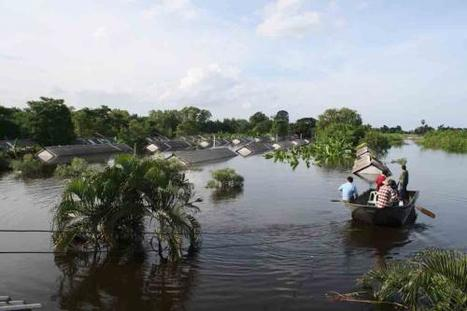 Wall set up to protect Pathum Thani | Thailand Floods (#ThaiFloodEng) | Scoop.it