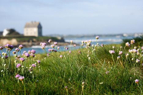 photo en Finistère, Bretagne et...: au Dossen - Santec - île de Sieck (7 photos) | Revue de Web par ClC | Scoop.it