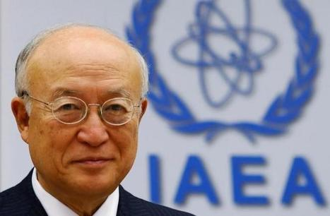 IAEA chief: Nuclear power plant was disrupted by cyber attack | Informática Forense | Scoop.it