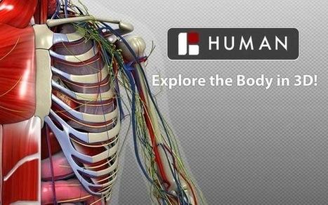 3D Bio Digital Human - #atlasanatómicohumano en #3d #gratuito | Educación en Castilla-La Mancha | Scoop.it
