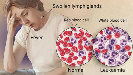 Best Hospital for Blood Cancer Treatment in India | Health and Medicine | Scoop.it