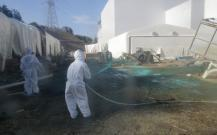 Japon: deux employés retrouvés morts à la centrale de Fukushima | Japan Tsunami | Scoop.it