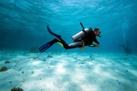 Make Scuba Diving Your New Workout   All about water, the oceans, environmental issues   Scoop.it