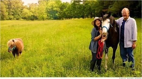 $800,000 saved, dreams of breeding horses | Gov & Law Tasha F | Scoop.it