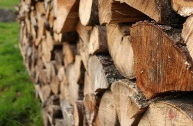 Bon est le bois, mais à la juste échelle | Faire Territoire | Scoop.it