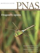 Proceedings of the National Academy of Sciences : Archive de tous les numéros en ligne   Insect Archive   Scoop.it