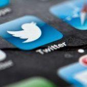 Twitter veut lever jusqu'à 1,6 milliard de dollars avec son entrée en Bourse | News Social Media | Scoop.it