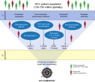 Second generation direct-acting antivirals – Do we expect major improvements? | Hepatitis C New Drugs Review | Scoop.it