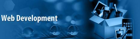 5.Strategis for web development :   Soft Solution technologies   Scoop.it