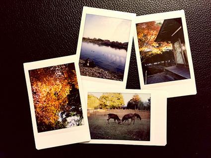 Fujifilm Instax Room | Flickr - Photo Sharing! | Petite Veille pour Tous | Scoop.it