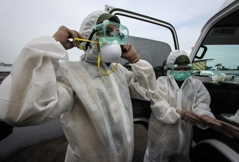 West Africa sees spike in Ebola cases as decline stalls-WHO - World Bulletin | News You Can Use - NO PINKSLIME | Scoop.it