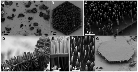 Three-Dimensional Mesoscale Heterostructures of ZnO Nanowire Arrays Epitaxially Grown on CuGaO2 Nanoplates as Individual Diodes | Research | Scoop.it