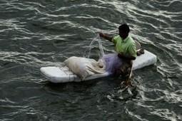 Nualgi – saviour for sewage water? | Ecoideaz.com | Scoop.it