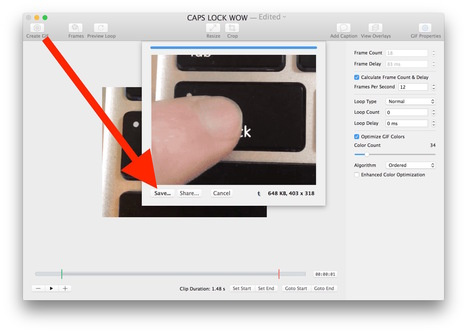Convert Video to GIF on Mac with GifBrewery | Daring Gadgets, QR Codes, Apps, Tools, & Displays | Scoop.it