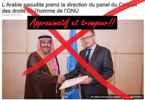 Non, l'Arabie Saoudite ne dirige pas le Conseil des Droits de l'Homme à l'ONU   NLMR   Désinformation   Scoop.it