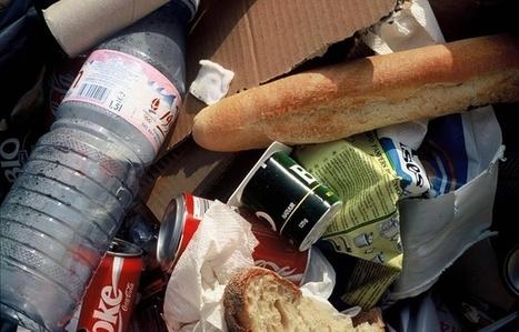 EXCLUSIF. Gaspillage alimentaire: 16 milliards d'euros de nourriture sont jetés en France chaque année | Planete DDurable | Scoop.it