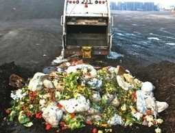 FAO Says Food Waste Harms Climate, Water, Land, and Biodiversity | Year 9 Geography - Sustainable Biomes | Scoop.it