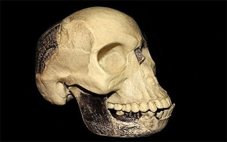 """New study suggests a single miscreant, Charles Dawson, created the """"Piltdown Man"""" hoax 