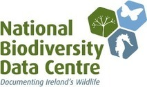 Vascular plants - Biodiversity Ireland | GarryRogers Biosphere News | Scoop.it