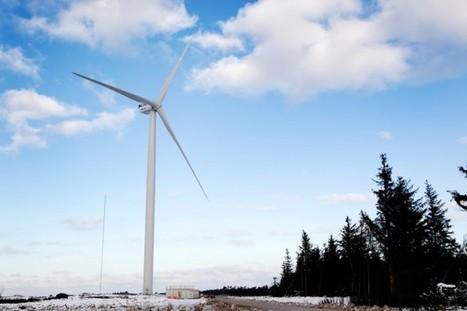 Danemark: nouveau record du monde de consommation d'énergie éolienne | Énergies vertes | Actualités écologie | Scoop.it