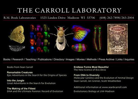 Sean Carroll Laboratory   Middle School Life Science   Scoop.it