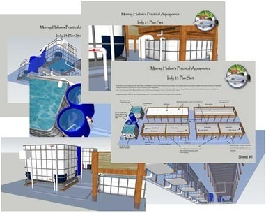 Murray Hallam's Practical Aquaponics Commercial Educational Domestic. | Sustainable Agriculture | Scoop.it