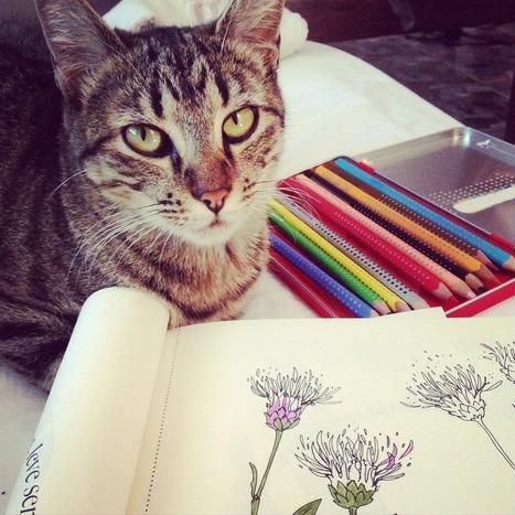 Mon premier atelier DIY Do it yourself avec les fleurs azalées | Actu Web marketing - Blogging | Scoop.it
