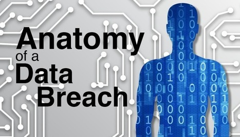The Anatomy of a Data Breach   Information Security   Scoop.it
