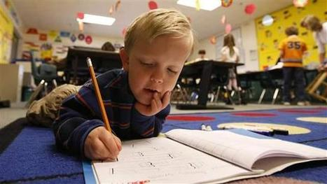 Can Academic Standards Boost Literacy and Close the Achievement Gap? | Educational Technology: Leaders and Leadership | Scoop.it