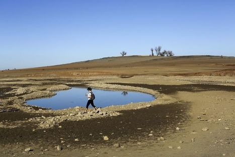 2014 Confirmed as Hottest Year On Record, With Spike in Ocean Temperatures   Climate Change   Scoop.it