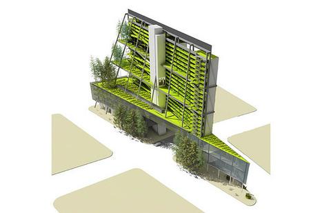 L'agriculture urbaine ... de nouvelles perspectives ? | Questions de développement ... | Scoop.it