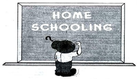 Number of Homeschoolers Growing Nationwide | Education News | The Florida Education Channel | Scoop.it