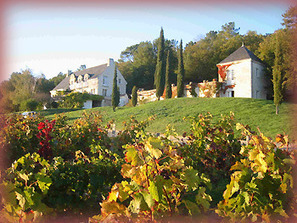 Domaine de Beauséjour - Lodging and wines of Chinon | BEAUSEJOUR by BEAUSEJOUR | Scoop.it